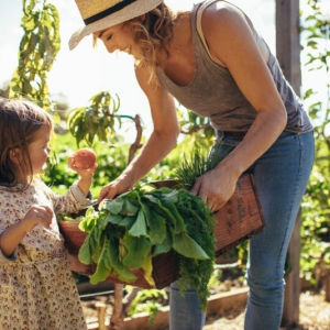 Little,Girl,Looking,At,Fresh,Vegetables,In,Tray,Of,A