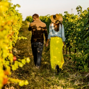 Couple,Holding,Hands,At,Sunset,In,A,Winery,Filed